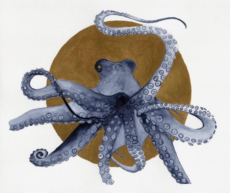 20180103Octopus-indigoX
